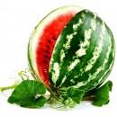 Семена арбуза оптом
