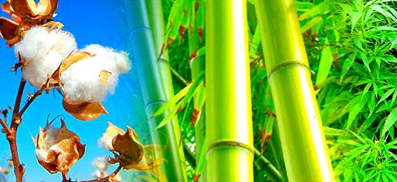 """Белье нижнее купить недорого : мужские трусы-шорты Andrew Christian (США) из класса ткани: хлопок в Сумах (Украина) интернет магазин нижнего белья """"Элегант"""" - коллекция моды сезона 2014 года (смотреть бесплатно онлайн фото)"""