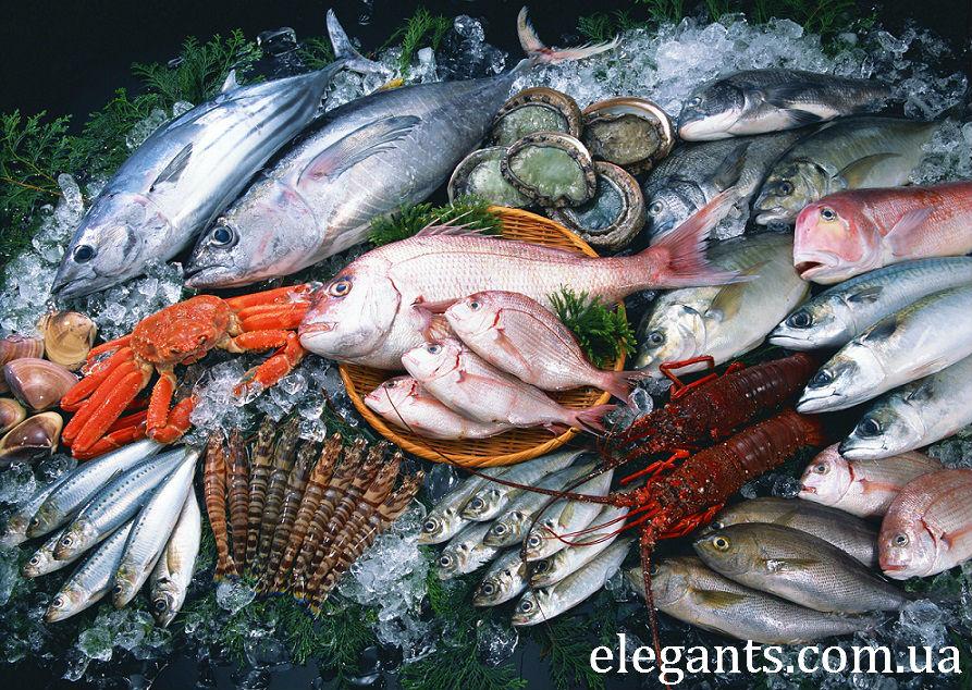 черная икра белуги,черная икра белуги купить,морепродукты,икра,белуга,осетр,севрюга,деликатесы,черная икра,красная икра,икра,субпродукты,красная икра,черная икра,икра лососевая,икра летучей рыбы,икра частиковых рыб,продукты,продукты питания,какие продукты,магазин продуктов,таблица продуктов,список продуктов,продуктовый магазин,простой рецепт,акция сегодня,новости,последние новости,новости сегодня,новости 2015,новости россии,новости украины,интересные новости,икра,красная икра,черная икра,икра цена,купить икру,икра фото,лосось,рыба,красная рыба,соление,еда,вкусная еда,продукты,продукты питания,какие продукты,магазин продуктов,таблица продуктов,список продуктов,продуктовый магазин,простой рецепт,акция сегодня,новости,последние новости,новости сегодня,новости 2015,новости россии,новости украины,интересные новости,икра,красная икра,черная икра,икра цена,купить икру,икра фото,лосось,рыба,красная рыба,соление,еда,вкусная еда,продукты,продукты питания,какие продукты,магазин продуктов,таблица продуктов,список продуктов,продуктовый магазин,простой рецепт,акция сегодня,новости,последние новости,новости сегодня,новости 2015,новости россии,новости украины,интересные новости,икра,красная икра,черная икра,икра цена,купить икру,икра фото,лосось,рыба,красная рыба,соление,еда,вкусная еда