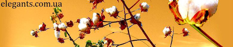 """Купить недорого : носки мужские Tommy Hilfiger из класса ткани : хлопок, в интернет магазине одежды и нижнего белья """"Элегант"""" коллекция модной одежды сезона 2014 года (смотреть онлайн бесплатно фото : мужские носки)"""