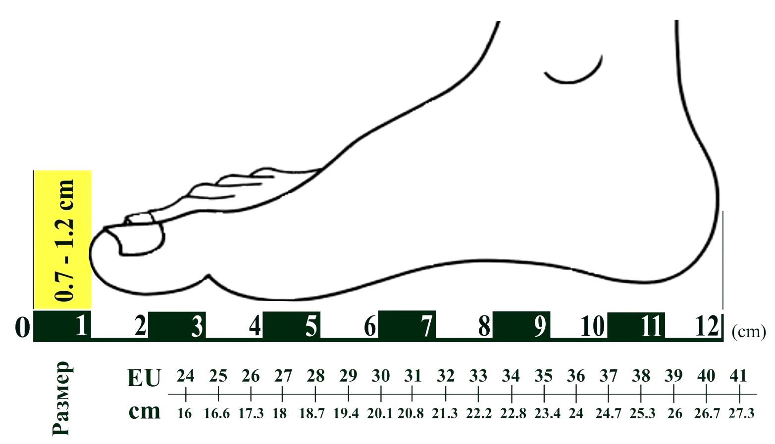 """Купить недорого детские носки для девочек HELLO KITTY от прозводителя Sanrio (Япония): классные, в Сумах (Украина) интернет магазин одежды и нижнего белья """"Элегант"""" коллекция моды детской одежды и нижнего белья сезона 2014 (смотреть онлайн бесплатно фото)"""